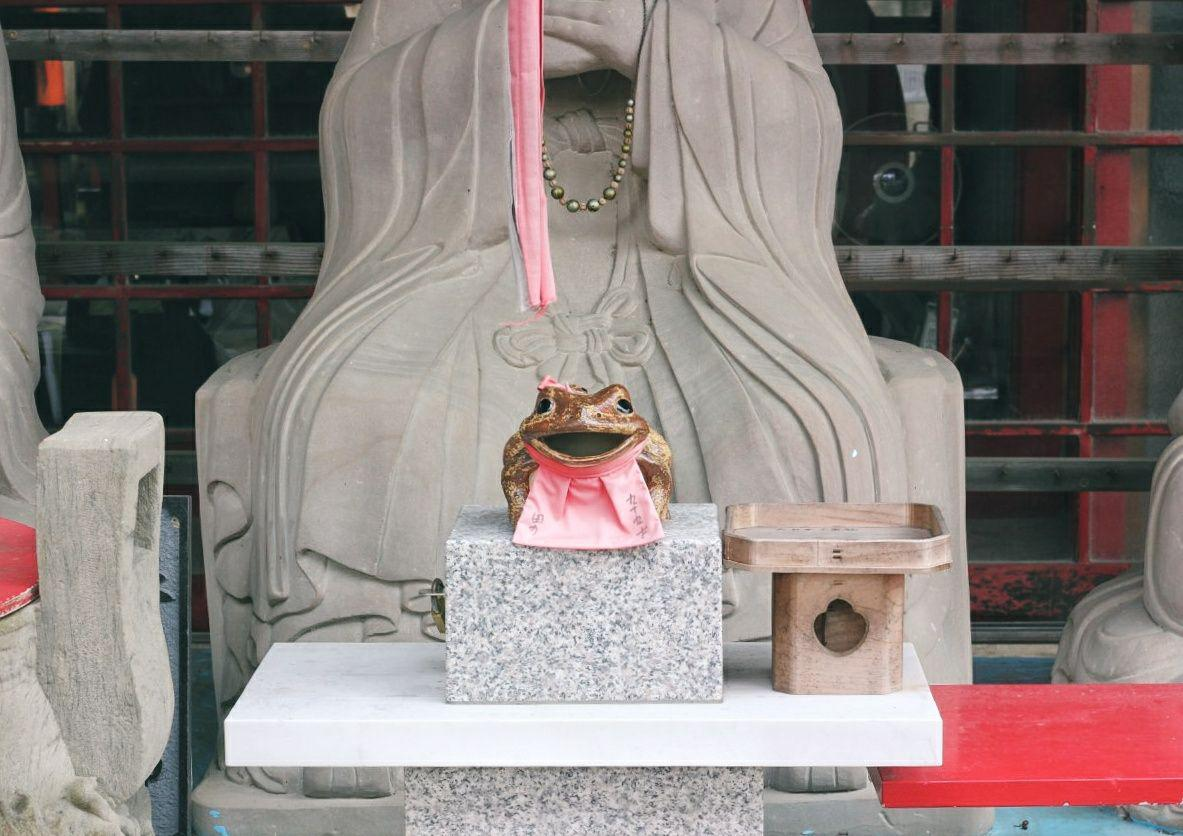 Ranocchio salva Kyoto